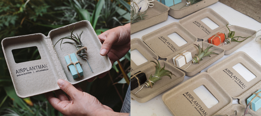 plant sustainable packaging